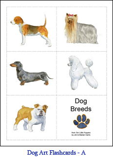 Small Format Dog Flashcards – Set A – Dogs