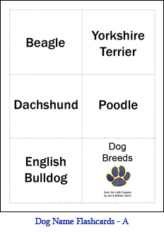 Small Format Dog Flashcards – Set A – Dog Names